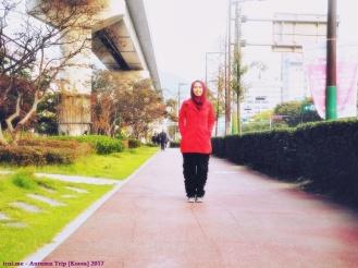 Musim gugur di Korea