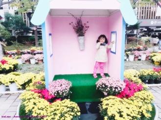 Festival bunga musim semi Busan